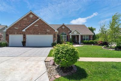 Single Family Home For Sale: 5371 Yaeger Circle Drive