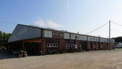 Gasconade County Commercial For Sale: 201 East Rosebud Avenue