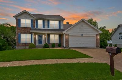 Arnold Single Family Home For Sale: 40 Hickory Bluff Lane