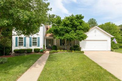 St Charles Single Family Home For Sale: 3300 Woodsview Drive