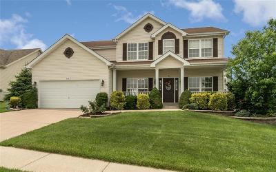 Wentzville Single Family Home For Sale: 6043 Blake Thomas Drive