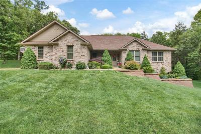 Franklin County Single Family Home For Sale: 424 Mark Twain Loop