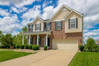 Lake St Louis Single Family Home For Sale: 1035 Landing Place Drive