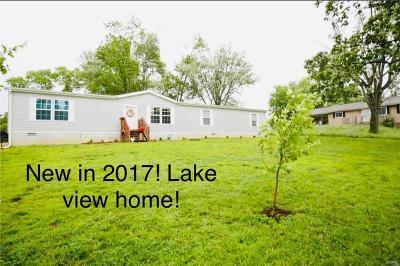 De Soto Single Family Home For Sale: 3829 Alta Drive