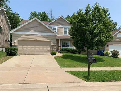 Single Family Home For Sale: 3580 Yellow Jasmine Drive