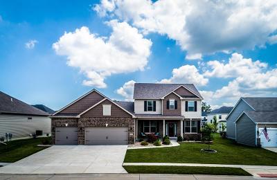 O'Fallon Single Family Home For Sale: 271 Oakhurst Circle