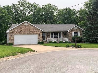 Hannibal MO Single Family Home For Sale: $187,000