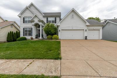 Chesterfield Single Family Home For Sale: 530 Eagle Manor Lane