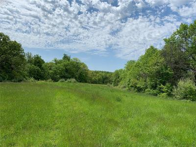 Adair County, Audrain County, Clark County, Knox County, Lewis County, Macon County, Marion County, Monroe County, Pike County, Ralls County, Scott County, Shelby County Farm For Sale: Hwy Y
