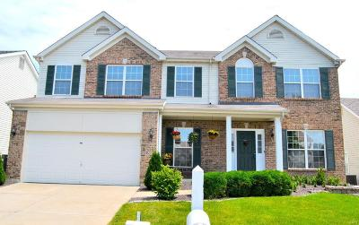 O'Fallon Single Family Home For Sale: 1228 Cold Spring Drive