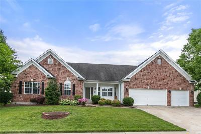Dardenne Prairie Single Family Home For Sale: 2519 Macpherson Drive