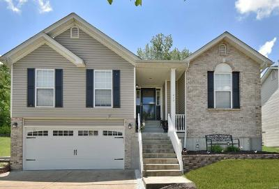 Single Family Home For Sale: 410 Winter Bluff Drive