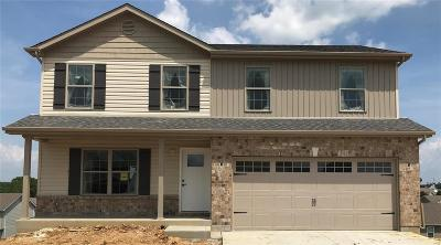 Wentzville Single Family Home For Sale: Huntleigh Grove Court