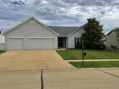Single Family Home For Sale: 303 Knowledge Drive