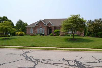 Caseyville Single Family Home For Sale: 932 Far Oaks
