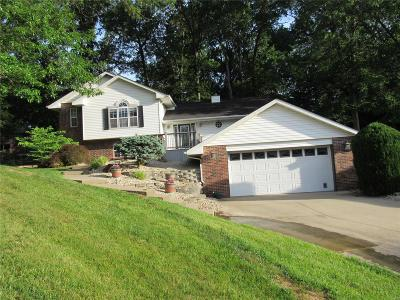Bethalto Single Family Home For Sale: 125 Valleywood Court