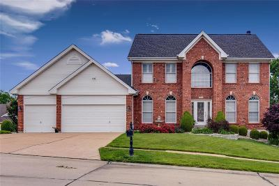 St Louis MO Single Family Home For Sale: $409,900