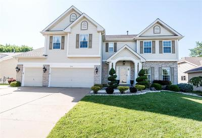 Imperial Single Family Home For Sale: 2565 Breakwater Drive
