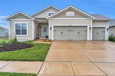 ST CHARLES Single Family Home For Sale: 3248 Rivercrossing Place