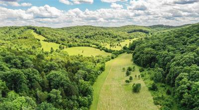 Jefferson County, Madison County, St Francois County Farm For Sale: 6535 St Johns Lane