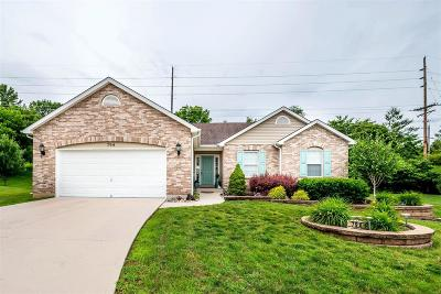 Arnold Single Family Home For Sale: 794 Berrywine Lane