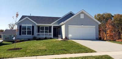 Wentzville Single Family Home For Sale: 707 Saddle Ridge Road