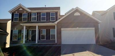 Wentzville Single Family Home For Sale: 510 Horseshoe Bend Drive