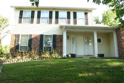 Single Family Home For Sale: 3002 Arrowhead Point