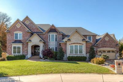 Single Family Home For Sale: 2426 Christopher View Drive