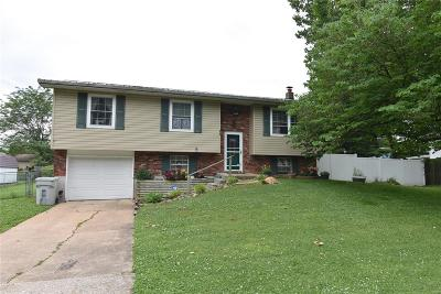 St Francois County Single Family Home Active Under Contract: 610 Walter