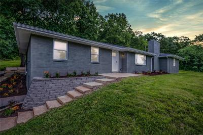 St Louis County Single Family Home For Sale: 1336 Pond