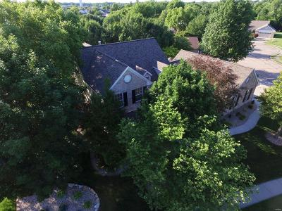 O'Fallon Single Family Home For Sale: 301 Fieldspring Court