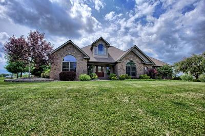 Edwardsville Single Family Home For Sale: 5985 Staunton Road