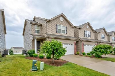 Fairview Heights Single Family Home For Sale: 862 Harbor Woods Drive