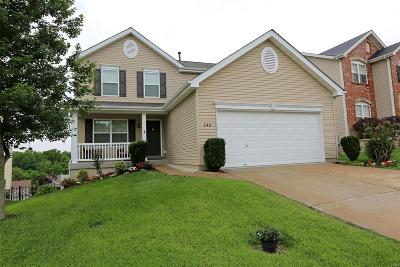 Single Family Home For Sale: 348 Magoffin Trails Court