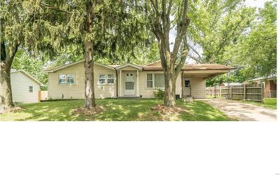 St Charles Single Family Home For Sale: 27 Westview Drive