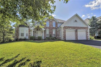 Franklin County Single Family Home For Sale: 873 Cabernet Lane