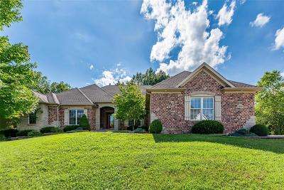 St Charles County Single Family Home For Sale: 1019 Hawks Landing Drive