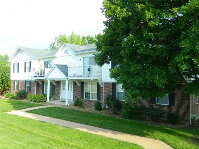 Franklin County Condo/Townhouse For Sale: 253 Carriage Court