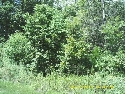 Wright City Residential Lots & Land For Sale: 16 Mark Peterson