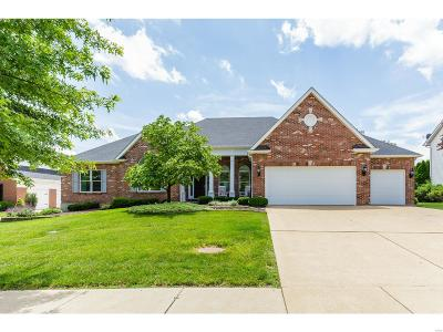 St Louis County Single Family Home For Sale: 16058 Pierside