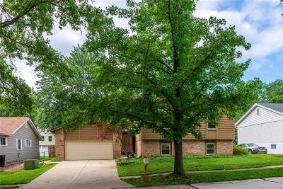 Single Family Home For Sale: 4506 Skyridge