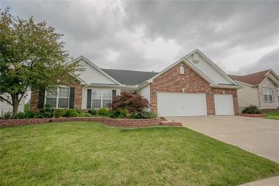 Wentzville Single Family Home For Sale: 2507 Bear Creek Drive