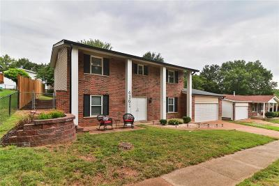 St Louis County Single Family Home For Sale: 4361 Ironside Lane