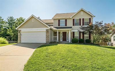O'Fallon Single Family Home For Sale: 8 Conestoga Court