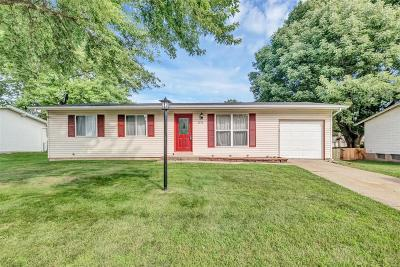 Florissant Single Family Home For Sale: 2575 Valley Brook Drive
