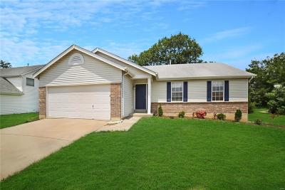 Wentzville Single Family Home For Sale: 2048 Peine Forest