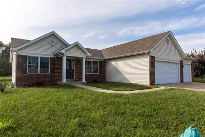 Fairview Heights Single Family Home For Sale: 9308 Marberry Drive