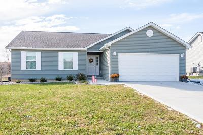 Lincoln County Single Family Home For Sale: 129 Tbb Linder Lane