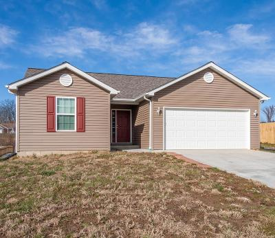 Lincoln County Single Family Home For Sale: 190 Tbb Jamison Connor Drive